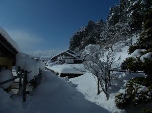 DSCN9502a-snow2vgl